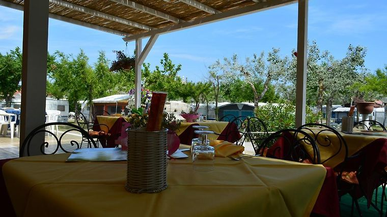 Camping Internazionale Exterior Hotel information