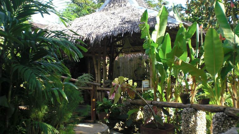 Bantayan Island Nature Park And Resort Exterior