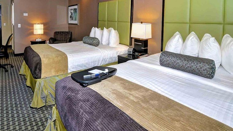 Comfort Suites New Bern photos Room