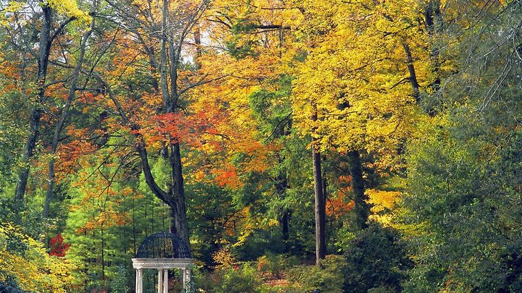 °HOTEL HILTON GARDEN INN KENNETT SQUARE, PA 3* (United States)   From US$  184 | BOOKED