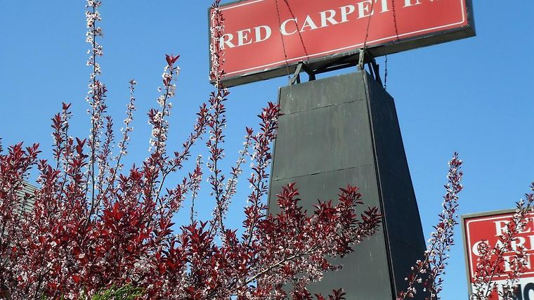 Red Carpet Inn Brooklawn Exterior Hotel information