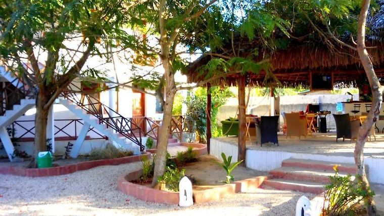 Pasha Nungwi Hotel Nungwi Tanzania From Us 103 Booked