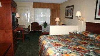 Best Western Orlando East Inn & Suites photos Room Standard King Room