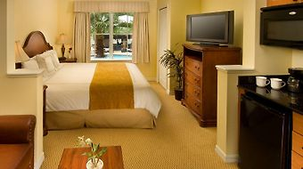 The Point Orlando Resort photos Room Executive Studio Suite