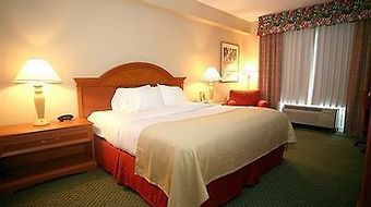Fairfield Inn & Suites Orlando Int'L Drive/Convention Center photos Room Deluxe King Room