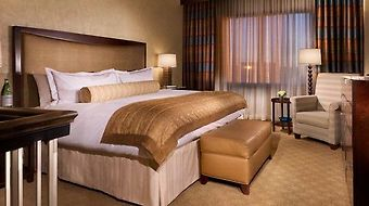 Intercontinental Dallas photos Room Executive Suite