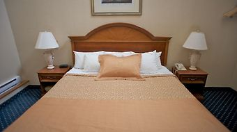 Monte Carlo Inns - Toronto Markham photos Room Queen