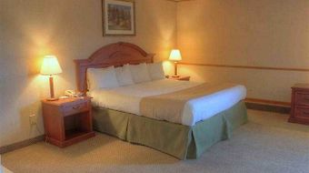 Best Western Woodhaven Inn photos Room