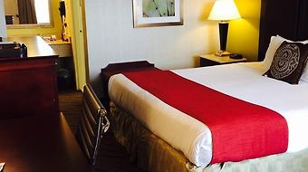 Best Western Mill River Manor photos Room