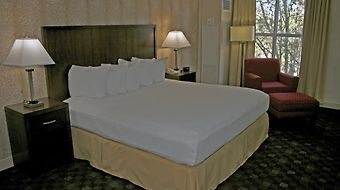 Doubletree By Hilton Hotel Norfolk Airport photos Room