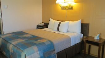 Canada'S Best Value Inn - Calgary photos Room