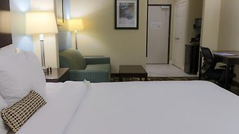 Best Western Plus Jfk Inn & Suites photos Room