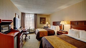 Comfort Inn Wethersfield - Hartford photos Room