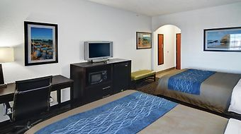 Comfort Inn & Suites Beachfront photos Room