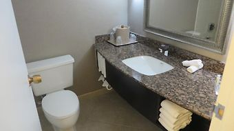 Holiday Inn Rolling Meadows Schaumburg Area photos Room