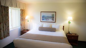Ashland Hills Hotel  And Suites photos Room