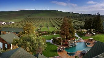 The Purple Orchid Wine Country photos Room