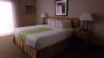 Best Western Valley Plaza Inn photos Room