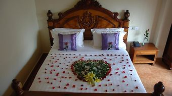 Lux Guesthouse photos Room
