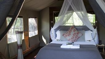 Paperbark Camp photos Room