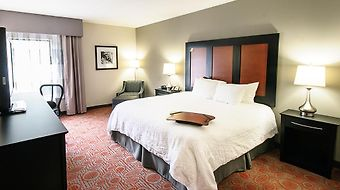 Hampton Inn Stafford And Conference Center photos Room