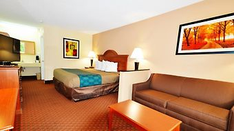 Econo Lodge Inn & Suites Cayce photos Room