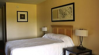 Crystal Cove Resort photos Room