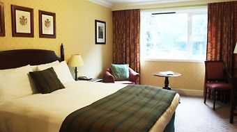 Redwood Hotel Bristol photos Room Executive Room