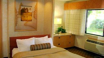 Best Western Corte Madera Inn photos Room
