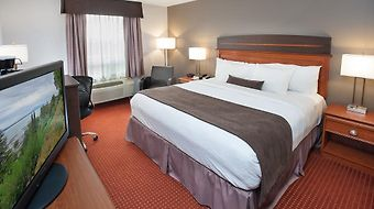 Best Western Plus Moncton photos Room