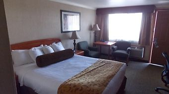 Best Western Plus Holiday Hotel photos Room