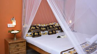 Golden Lodge Tangalle photos Room