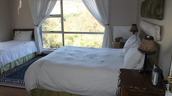 Forest View Guest House photos Room