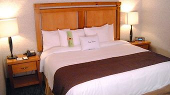 Doubletree Suites By Hilton Saltillo photos Room King Bed