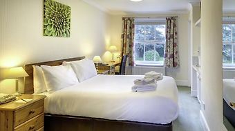 Best Western Lord Haldon Country Hotel photos Room