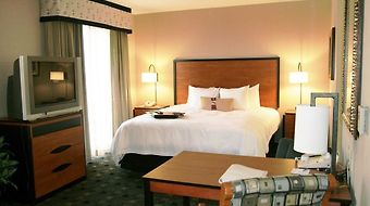 Hampton Inn And Suites Indianapolis-Fishers photos Room King Studio Suite