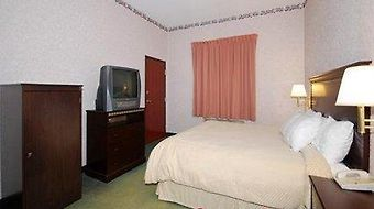 Comfort Suites photos Room Hotel information