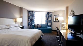 Hilton Arlington photos Room