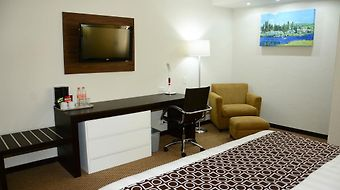 Wyndham Executivo Culiacan photos Room
