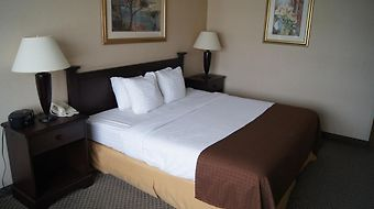 Comfort Inn Lancaster County North photos Room