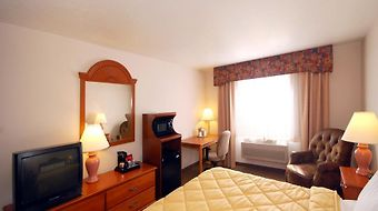 Comfort Inn photos Room Hotel information