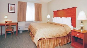 Quality Inn & Suites On The River photos Room