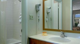 Days Inn Silver Springs/Ocala East photos Room Hotel information