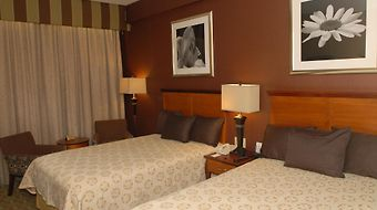 Best Western Plus Robert Treat photos Room