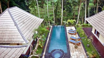 Junjungan Ubud Hotel And Spa photos Exterior Hotel information