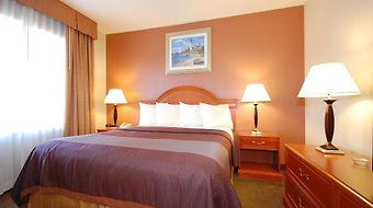 Best Western Airport Plaza Inn photos Room