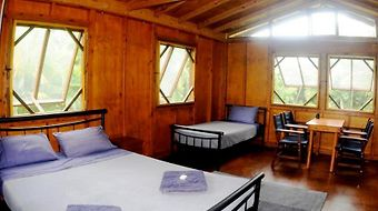 Daintree Rainforest Bungalows photos Room