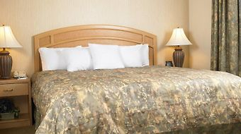 Homewood Suites By Hilton Hartford South-Glastonbury photos Room