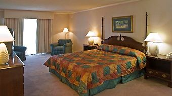 Miracle Springs Resort & Spa photos Room Room