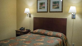 Put-In-Bay Resort And Conference Center photos Room